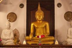 Golden Buddha in temple. Golden Buddha statue in temple, Sri Lanka Stock Photos