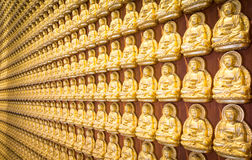 The Golden Buddha thousand Royalty Free Stock Images