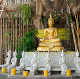 Golden Buddha under a Bodhi tree Stock Image