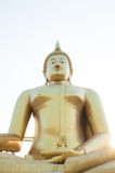 Golden Buddha. Royalty Free Stock Photos