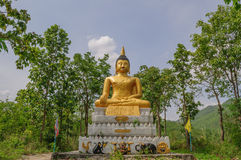 Golden Buddha. In the wild, Thailand Royalty Free Stock Image