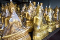 Golden Buddhas on Display Bangkok Thailand Stock Image