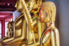 Golden buddhas image in a Thai temple. These golden buddhas images are located around a temple in the north of Thailand Royalty Free Stock Image