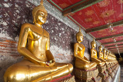 Golden buddhas lined up. Along the wall in temple Stock Images