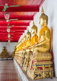 Golden buddhas in wat Mahatat Thaprajun Royalty Free Stock Images
