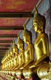 Golden buddhas in wat sutat, bangkok Stock Image