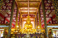 Golden buddhist in wat suan dok temple, chiang mai Royalty Free Stock Photo