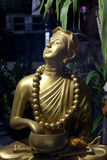 Golden Budha. Very incommon statue of Budha. This pose, Budha looking up over his shoulder Royalty Free Stock Images