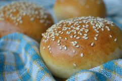 Golden burger buns with sesame seeds. Tasty golden-yellow burger buns with sesame seeds topping. Great for cooking recipes, fit and organic stock photo