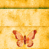 Golden butterfly  on grunge background Stock Photo