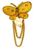 Golden butterfly Stock Photos