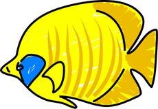 Golden butterflyfish Royalty Free Stock Photos