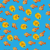 Golden Butterflyfish pattern. Very high quality original trendy vector seamless pattern with Golden Butterflyfish. Acanthurus leucosternon Stock Photos