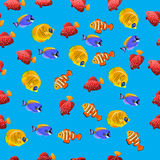 Golden Butterflyfish pattern. Very high quality original trendy vector seamless pattern with Golden Butterflyfish. Acanthurus leucosternon Stock Photography