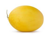 Golden cantaloupe. Isolated on the white background Stock Images