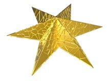 Golden caribbean starfish Royalty Free Stock Photos
