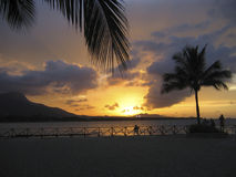 Golden Caribbean sunset. Golden sunset at the Caribbean beach Royalty Free Stock Images
