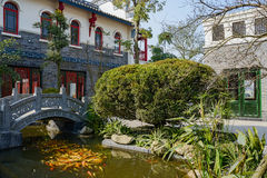Golden carp in brook before Chinese old-fashioned buildings on s Stock Image