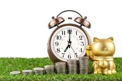 Golden cat beck with alarm clockl and coins. On grass floor.selective focus stock photo