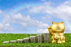 Golden cat beck money. Cat doll and coins on grass floor.selective focus royalty free stock photos