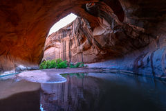 Golden Cathedral Neon Canyon Escalante National Park Utah Royalty Free Stock Images