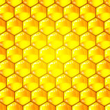 Golden  cells of a honeycomb pattern. Stock Photo