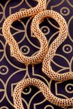 Golden chain on gold and brown background. A twisted golden knitted chain on a patterned gold and dark brown background Royalty Free Stock Photos