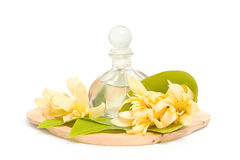 Golden champaka essential oil with champaka flower for spa aroma Royalty Free Stock Photo