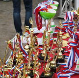 A golden champion trophy cup Royalty Free Stock Photography