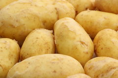 Golden Charlotte Potatoes Royalty Free Stock Images