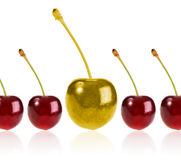 Golden cherry Royalty Free Stock Photo