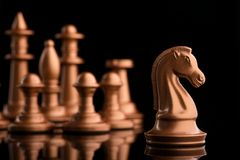 golden chess knight horse Royalty Free Stock Photography