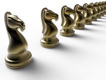 Golden chess knights. 3D render illustration of multiple golden chess knights arranged in a line. The chess pieces are isolated on a white background with Stock Photography