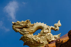 Golden Chinese dragon Royalty Free Stock Image