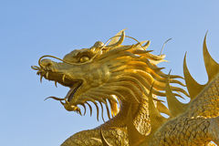 Golden Chinese dragon statue Stock Photos