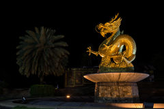 Golden chinese dragon Stock Image