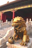 Golden Chinese lion. Sculpture of the angry chinese lion - guardian of the Forbidden city Stock Photo