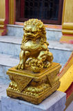 Golden Chinese lion statue Stock Photos