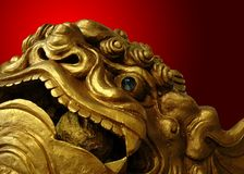 Golden Chinese lion statue Stock Image