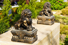 Golden Chinese lion statue Royalty Free Stock Photo