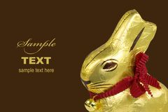 Golden Chocolate Easter Bunny Stock Photos
