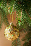 Golden christmas Stock Photography