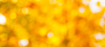 Golden Christmas abstract background Royalty Free Stock Photo