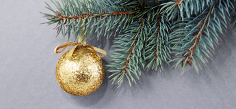 Golden Christmas ball on green spruce branch isolated . Royalty Free Stock Photo