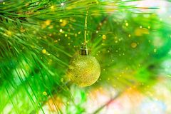 Golden Christmas ball hanging on natural green pine tree branch, confetti lights flare, glitter, bright, copy space, greeting card Royalty Free Stock Photography