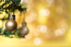Golden christmas ball ornament decorate on fir tree Stock Image