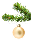 Golden christmas ball on a tree Stock Photography