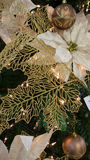 Golden Christmas balls Royalty Free Stock Photography