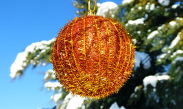 Golden  Christmas bauble hanging in a tree with snow Stock Photography