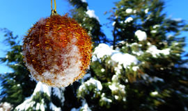 Golden  Christmas bauble on snow Royalty Free Stock Photo